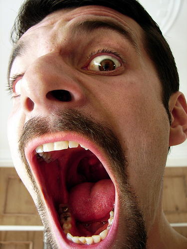 Big Mouth? Don't be that guy (courtesy Hamed Saber on Flickr CC).jpg